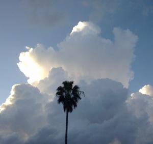 arriba del cielo arriba