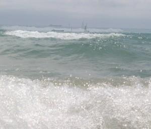 <mar rara
