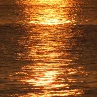 camino-de-oro