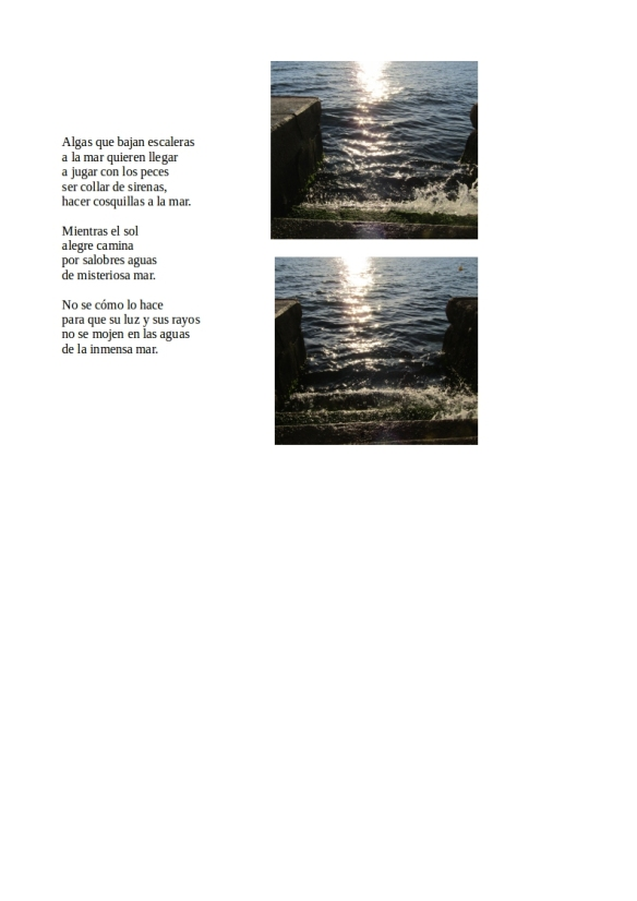 Algas.Sol.Mar